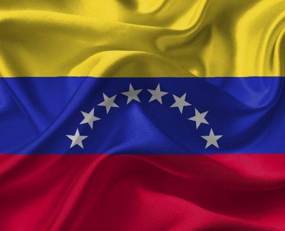 Machtkampf im Erdölstaat. Die Krise in Venezuela und ihre Akteure