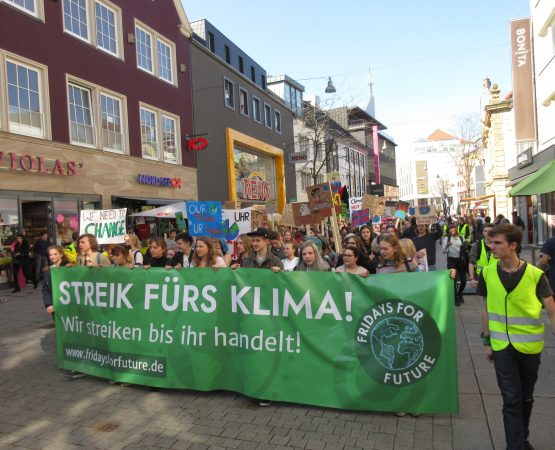 """""""Fridays For Future fragt"""", Jugendorganisationen antworten!"""
